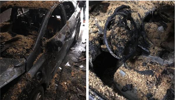 Электромобиль Ford полностью сгорел во время зарядки: опубликовано фото - today.ua