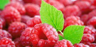 Диетологи назвали идеальную ягоду для похудения - today.ua