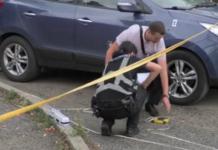Це помста: В Ужгороді обстріляли автомобіль начальника УЗЕ Нацполіції (фотороботи) - today.ua