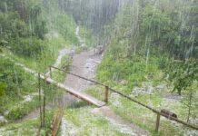 У розпал літа в Карпатах випав сніг - today.ua