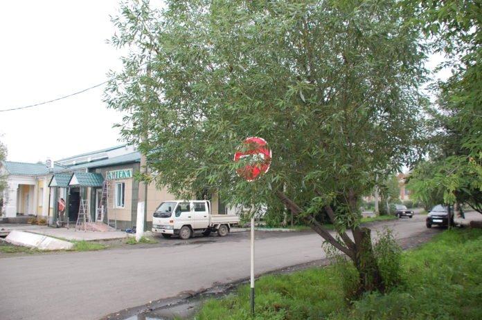 Автомобилистам на заметку: дорожный знак может стать причиной отмены штрафа - today.ua