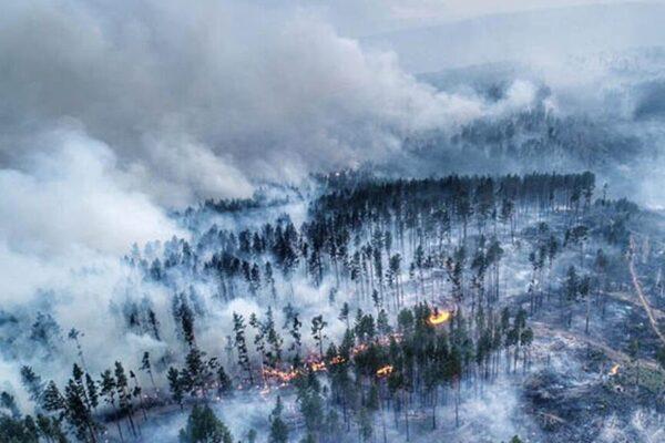 В Росії вирішили боротись з масштабною лісовою пожежою за допомогою молитов