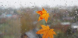 Холод і дощі: синоптики дали прогноз погоди на тиждень - today.ua