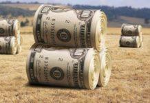 Іноземці зможуть купувати українську землю: Гончарук зробив нову заяву - today.ua