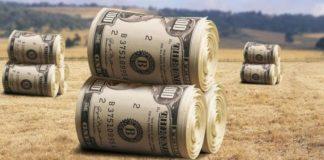 """Иностранцы смогут покупать украинскую землю: Гончарук сделал новое заявление"""" - today.ua"""
