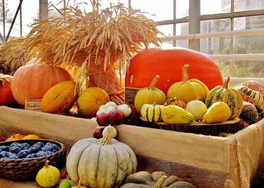 19 октября: какой сегодня праздник, и что нельзя делать - today.ua