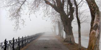 Тумани і похолодання: синоптики розповіли про погоду на тиждень - today.ua