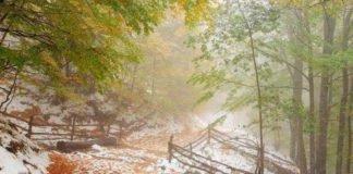 Українцям обіцяють мокрий сніг: прогноз погоди на 7 жовтня - today.ua