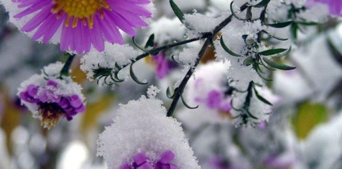 Первый снег и заморозки: синоптики предупредили об изменении погоды - today.ua