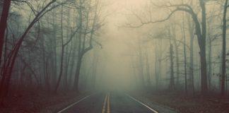 Сухо з туманами: прогноз погоди на 23 жовтня - today.ua