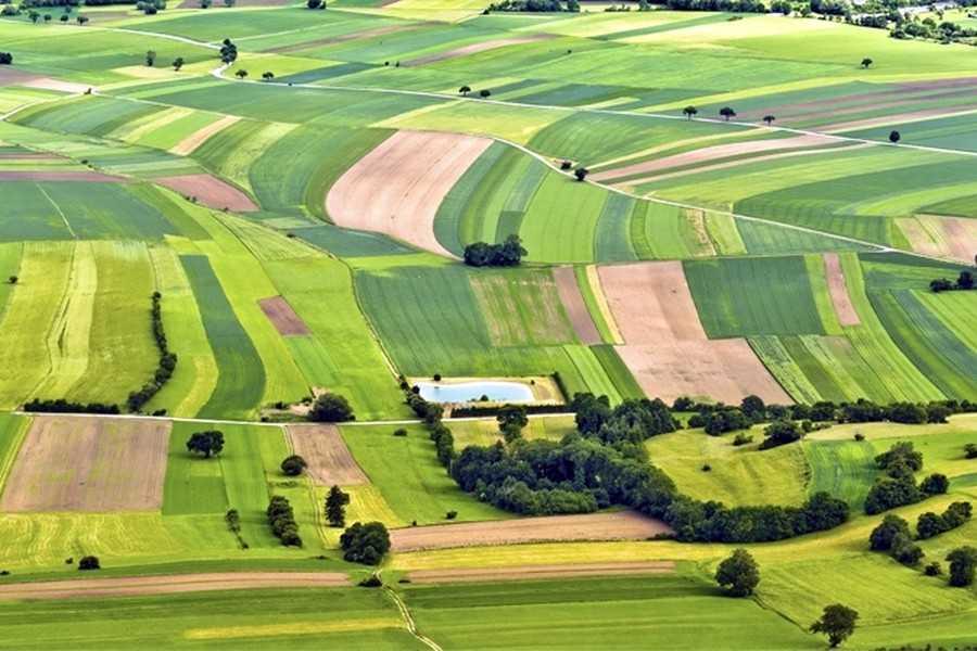 Ринок землі: Зеленський підписав закон, який різко звужує коло продавців і покупців землі