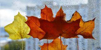"""Сиро і вітряно: синоптики дали прогноз на 5 листопада """" - today.ua"""