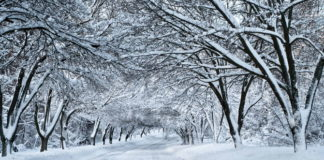 Прогноз погоди на вихідні: українцям обіцяють перший сніг - today.ua