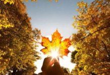 И дождь, и солнце: синоптики удивили прогнозом погоды на 8 ноября - today.ua