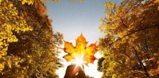 І дощ, і сонце: синоптики здивували прогнозом погоди на 8 листопада - today.ua