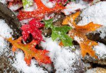 Погода на 18 ноября: синоптики рассказали, в каких областях ударят морозы - today.ua
