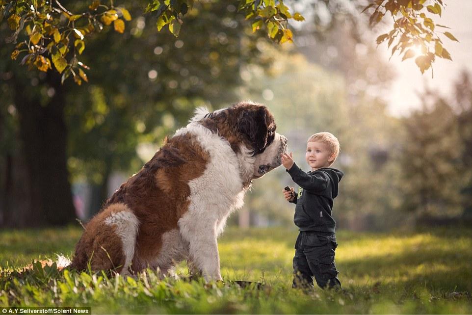 ТОП-5 собак, готових завжди прийти на допомогу людині - today.ua