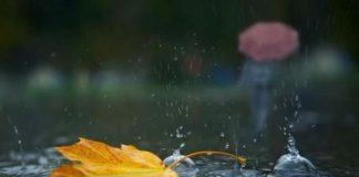 В каких областях потеплеет, а где пройдут дожди: синоптики дали прогноз на неделю - today.ua