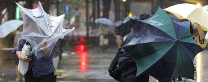 Прогноз погоди: українцям обіцяють сильний вітер і морози - today.ua
