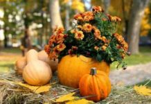 20 ноября: какой сегодня праздник и день ангела - today.ua