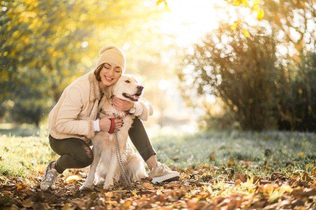 Лучшие породы собак и котов для женщин за 30 - today.ua