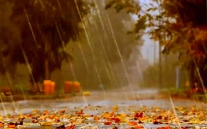 Украину накроет дождями: синоптики дали прогноз погоды на 11 ноября - today.ua