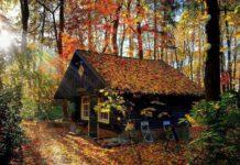 3 листопада: яке сьогодні свято і хто відзначає день ангела - today.ua