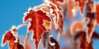 """Від -7 до +10: синоптики здивували прогнозом погоди на середу"""" - today.ua"""