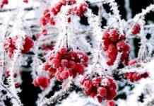 Мороз -10: в Украине ожидают приход настоящей зимы - today.ua