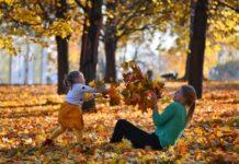 Суха і тепла осінь: синоптики порадували погодою на вихідні - today.ua