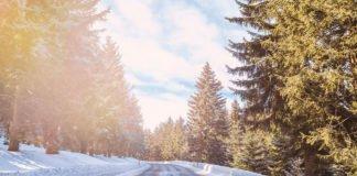 Что делают опытные водители, если выпал первый снег и появился гололед - today.ua