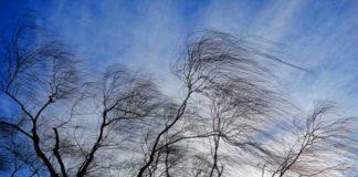 Штормовий вітер і дощі: синоптики дали прогноз на 3 листопада - today.ua