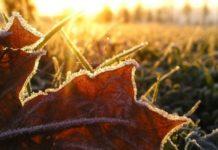Без осадков, но с заморозками: синоптики дали прогноз на 17 ноября - today.ua