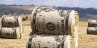 Открытие рынка земли: озвучена стоимость гектара - today.ua