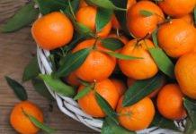Новорічні ласощі: Комаровський розповів, скільки мандаринів можна їсти в день без шкоди для здоров'я - today.ua