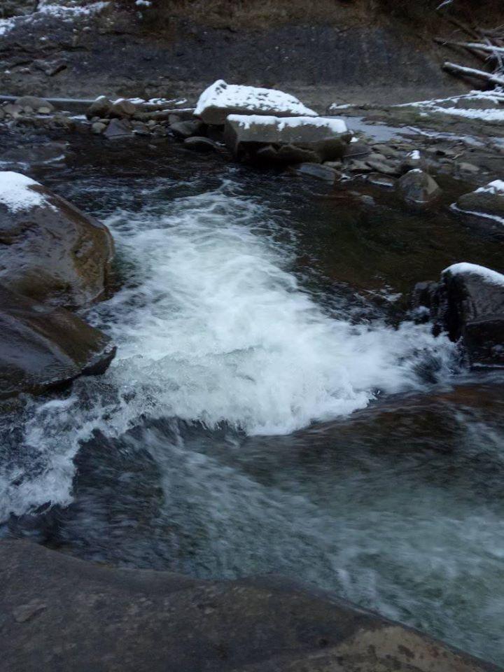 Снігопади і до 10 градусів морозу: з'явились фото перших днів зими в Карпатах