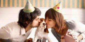 Езотерики назвали породи собак, які можуть зміцнити сім'ю - today.ua