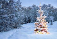 Погода на Новый год: ледяной дождь и заморозки - синоптики огорчили прогнозом - today.ua