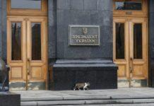 """Багато новорічних іграшок і подарунки """": У Мережі з'явилися фото ялинок з Офісу Зеленського - today.ua"""