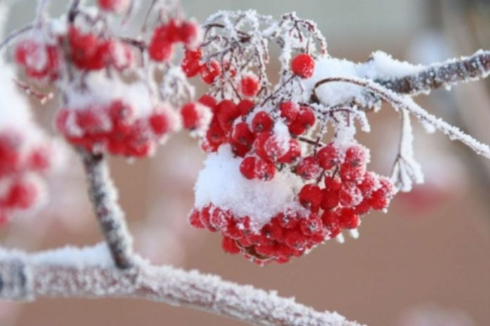 16 декабря: какой сегодня праздник и день ангела - today.ua
