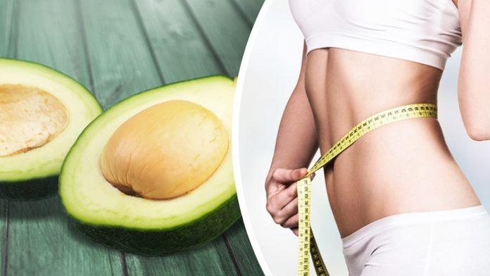 Авокадо для похудения: 2-дневная диета поможет сбросить 3 кг - today.ua