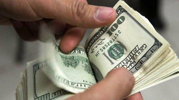 Доллар в Украине продолжает расти: эксперты рассказали, когда валюта перешагнет психологическую отметку  - today.ua