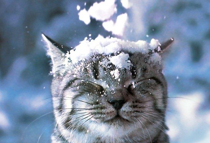 Прогноз погоди на грудень: мороз і сонце — синоптики