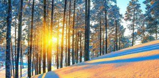 Прогноз погоди на грудень: мороз і сонце — синоптики - today.ua