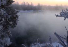 Погода в Украине на выходные: синоптики обещают туман, дожди и сильный ветер - today.ua