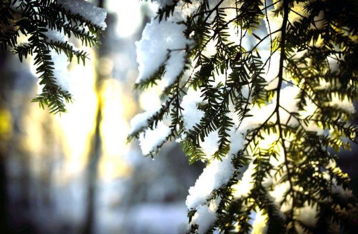 21 січня: яке сьогодні свято і що не можна робити