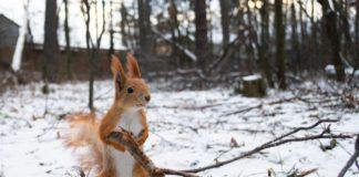4 января: какой сегодня праздник и почему нельзя ходить босиком - today.ua