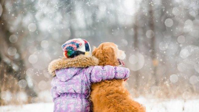 Погодные аномалии в конце января: синоптики удивили прогнозом на начало недели - today.ua