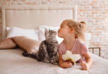 Езотерики назвали породи котів, здатних розкрити таланти дітей - today.ua