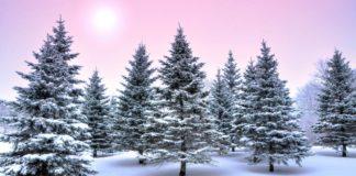 Снігопади, мороз і ожеледиця: синоптики оновили прогноз погоди до Різдва - today.ua